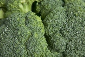 UK researchers: Broccoli might slow progression of osteoarthritis