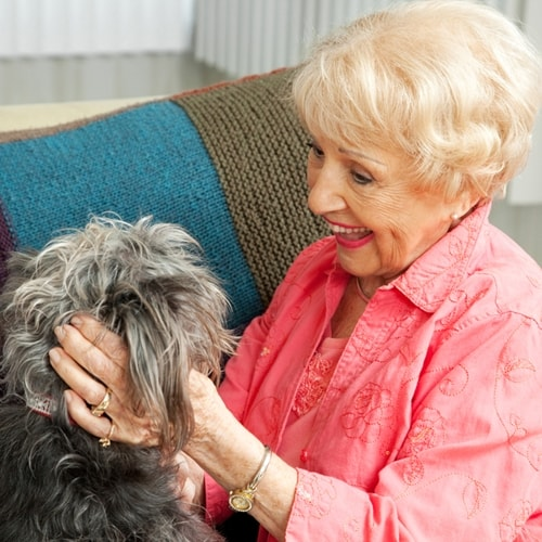 5 ways animals can improve the lives of seniors
