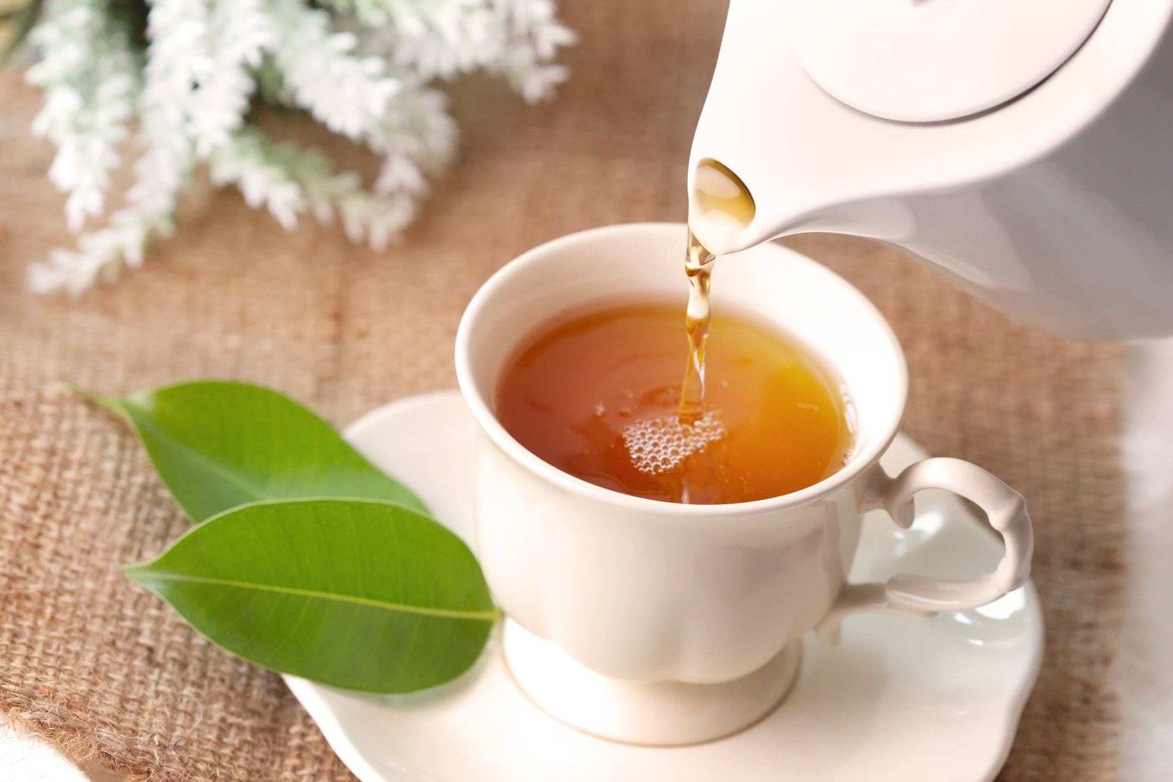 7 medicinal benefits of tea for older adults