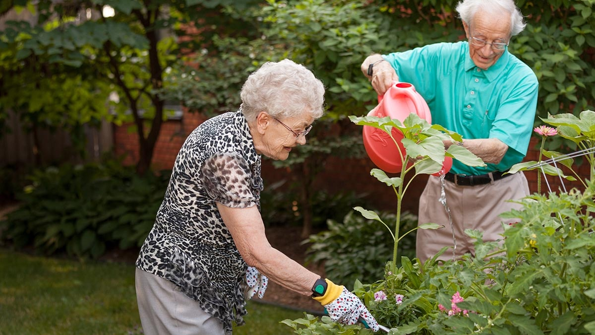 residents tending to the garden at Chartwell Oxford Gardens Retirement Residence